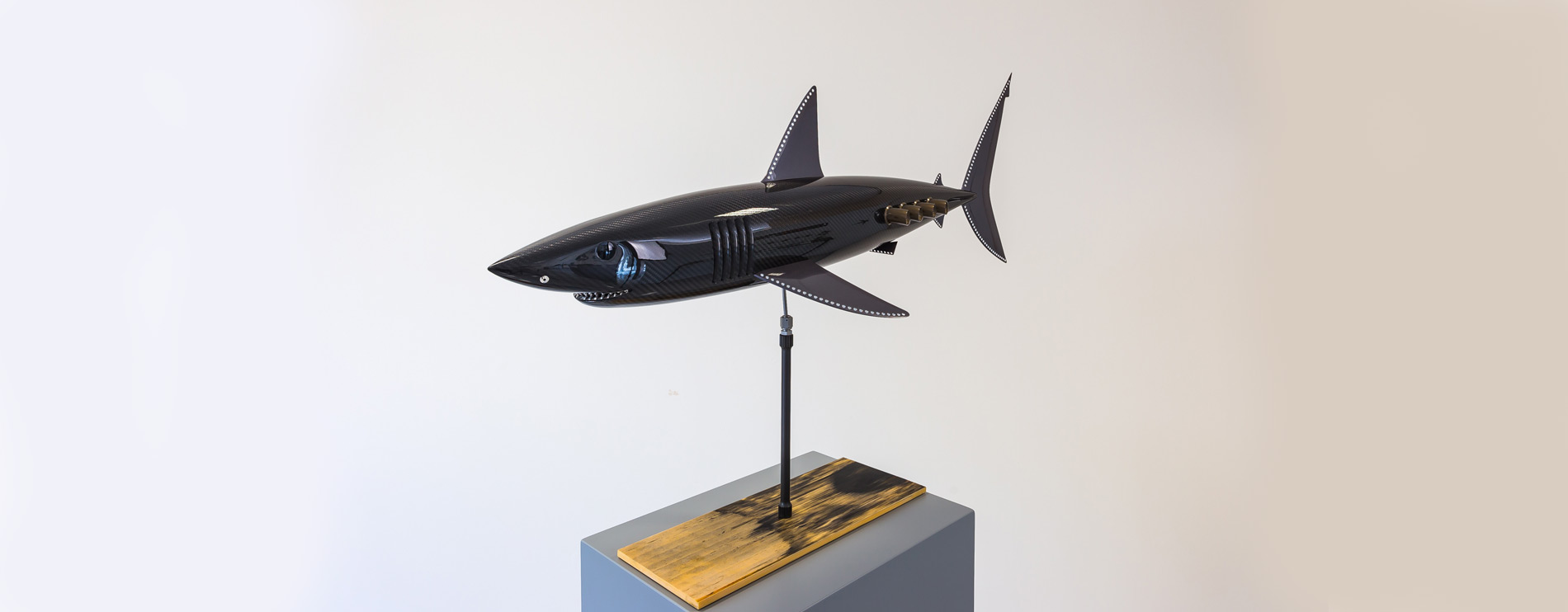 Carbon Fibre Mako Shark