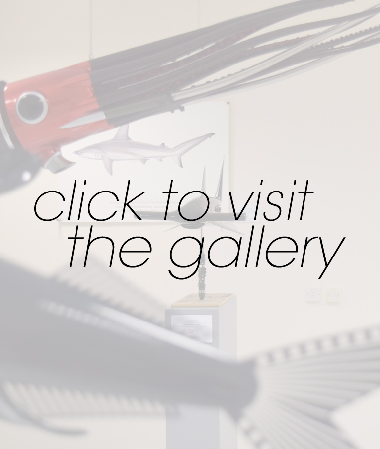 Visit The Carbon Art Gallery